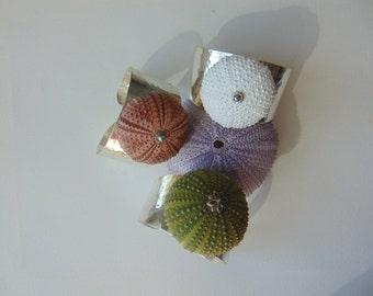 An adjustable silver- plated sea urchin bracelet,  real sea treasure.