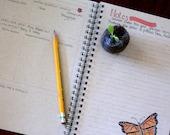 Garden Journal ~  kraft paper, spiral bound notebook; 100 lined pages, featuring hand drawn, garden themed artwork