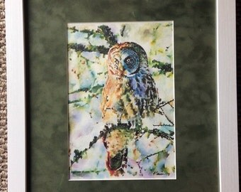 Owl watercolor painting: great gray owl watercolor print 11x14""