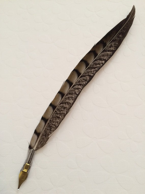 Items Similar To Feather Quill Ballpoint Calligraphy Pen