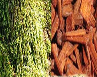 OAK MOSS & SANDALWOOD  Fragrance Oil - Mystic blend of oakmoss, sandalwood and patchouli followed by a soft blend of amber and musks