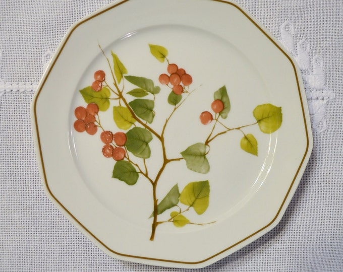 Vintage Winterling Bavaria Salad Plate Berry Fruit Branch Design Panchosporch