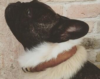 Furry dog collar mod. Dingo