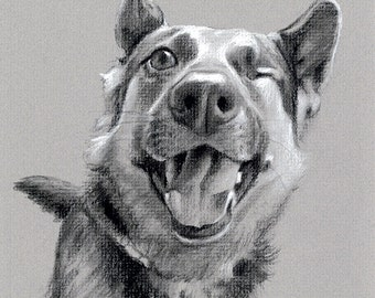 Charcoal Drawing - Custom Pet Portrait Memorial Art