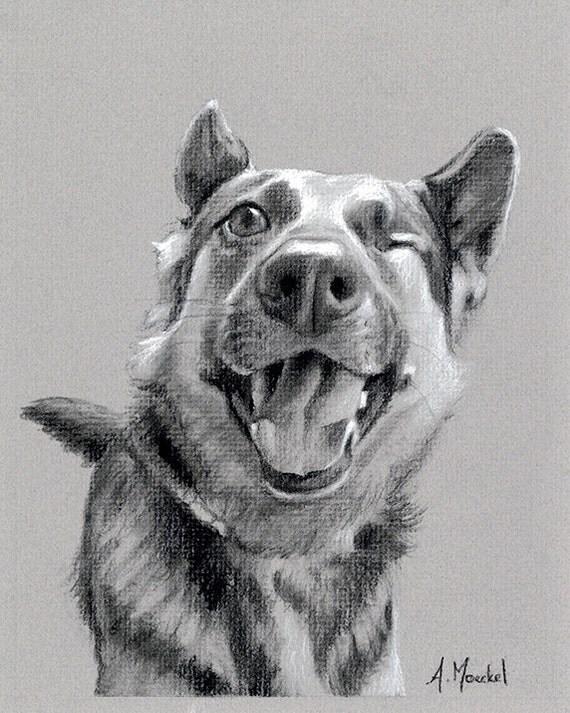 Charcoal Drawing - Custom Pet Portrait Memorial Art