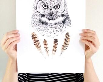 Wise Owl print (large) - Modern owl art print. Pencil, watercolor.