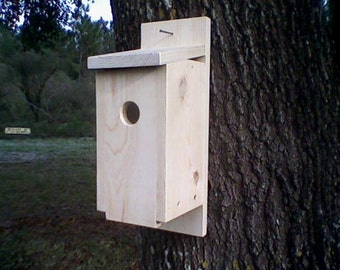 Eastern Bluebird House with Free Predator Guard