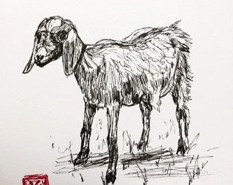 KillerBeeMoto: Pen Sketch of Goat