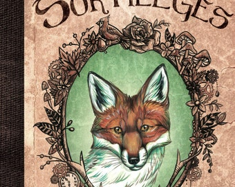 Foxes, charms and spells - illustrated book