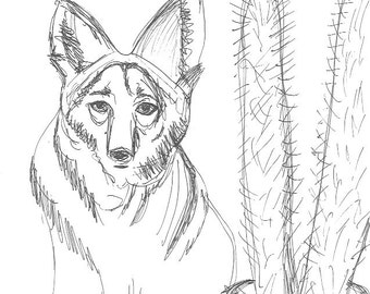 coyote and the cactus coloring sheet