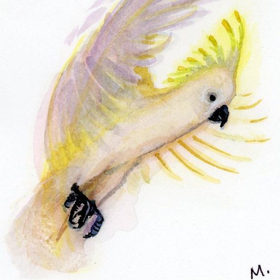 """Cockatoo - Watercolor - 4"""" x 4 1/2"""""""
