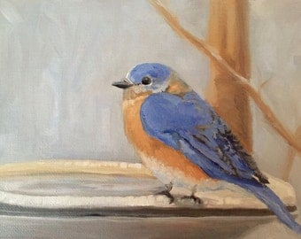 "Bluebird at Bath - 8x6"" Original Oil Painting by Renee Brennan Art, Bluebird Art, Bird Painting, Feather Friends, Blue Feather, Birdbath"