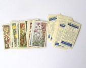 Wild Flowers collector cards: pack of 30 Brooke Bond Tea cards from 1964. Collectible or for use in crafts, scrapbook, journal OT366