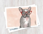 Bella the French Bulldog ...