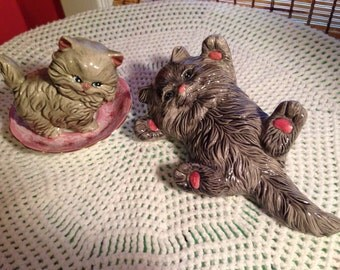 Pair of gray kitties with pink paws and pink noses