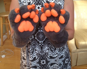 Grey paws with orange accent colors