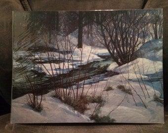 Snowy Stream - Artist Print