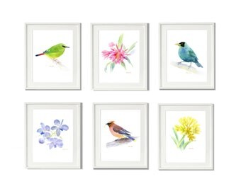 Bird Painting Print, Set of 6 Print, Watercolor Painting Print, Flower Painting Set Art