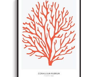 Red Coral Large Poster - PRINTABLE FILE.  Red Sea Coral Print. Coral Illustration. Marine Beach Nautical Coastal Print. Marine Life.