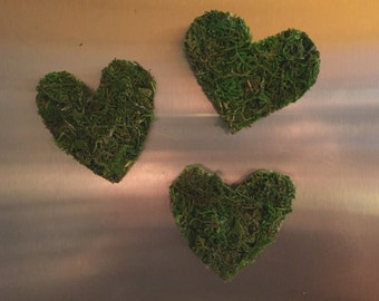 Moss magnets/ magnets/ moss heart magnets/moss/ home decor/ moss decor/ gift/ frig magnets/ refrigerator magnets/office magnets/office decor