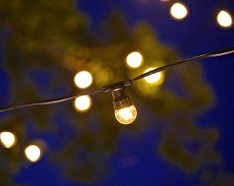 Festoon String Light Set 20 Piece DIY just hang and plug IP23 Outdoor Weather Rating Great for Party - Wedding Reception - Event - Home