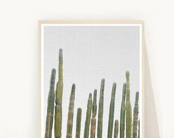 Cactus Plant, Cactus Print, Botanical Print, Cactus Photography, Printable Art, Home Decor, Wall Decor, Wall Art, Instant Download