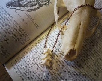 Snake Vertebrae & Quartz Necklace, Bone Jewelry, Bone Necklace, Oddities, Curiosities, Oddities Necklace, Vulture Culture