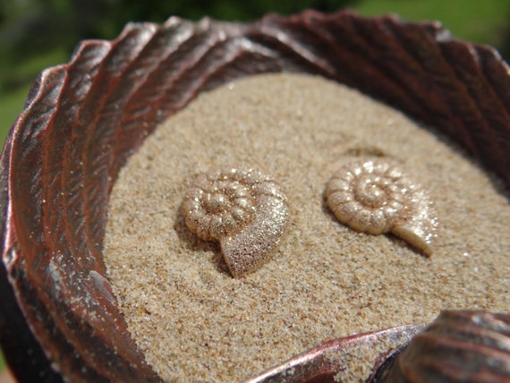 Earring Earrings Studs Stud ARIEL Nautical Shell Seashell Ammonite Beach Mermaid Pinup Rockabilly I'm really a Im The Little