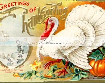 Antique Vintage Thanksgiving White Turkey Harvest Postcard Image - Digital Download Printable - Paper Crafts Scrapbookng Altered Art