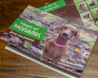 Tongues Out! 2016 Dachshund Calendar