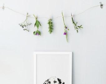 Baby dog print - Animal Nursery decor - Photography nursery wall art - Animal nursery prints - Printable nursery art - Cute puppy print