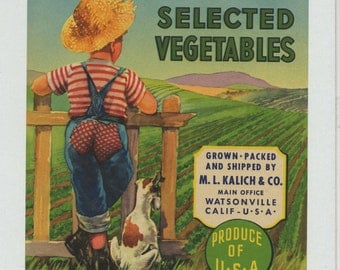 Big Patch California Vegetables Vintage Crate Label (1940s)