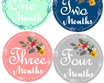 Photo Prop  Baby  Stickers Monthly Baby Stickers Milestone Stickers Floral Month Sticker  Bodysuit Monthly Stickers Baby Stickers Milestone