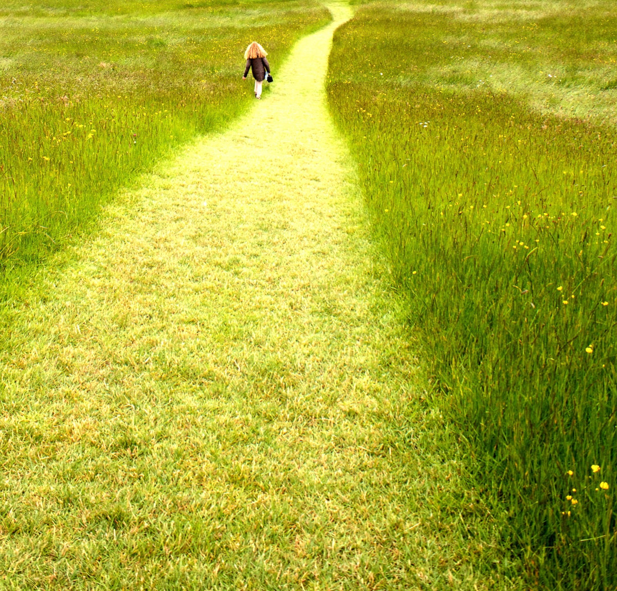green path into the - photo #48