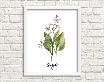Watercolor Sage Herb Printable Wall Art Botanical Herb Print Herb Printable Sage Wall Art Sage Printable Kitchen Decor Kitchen Wall Art