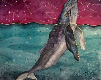 Humpback Whale and Constellations Watercolor Print