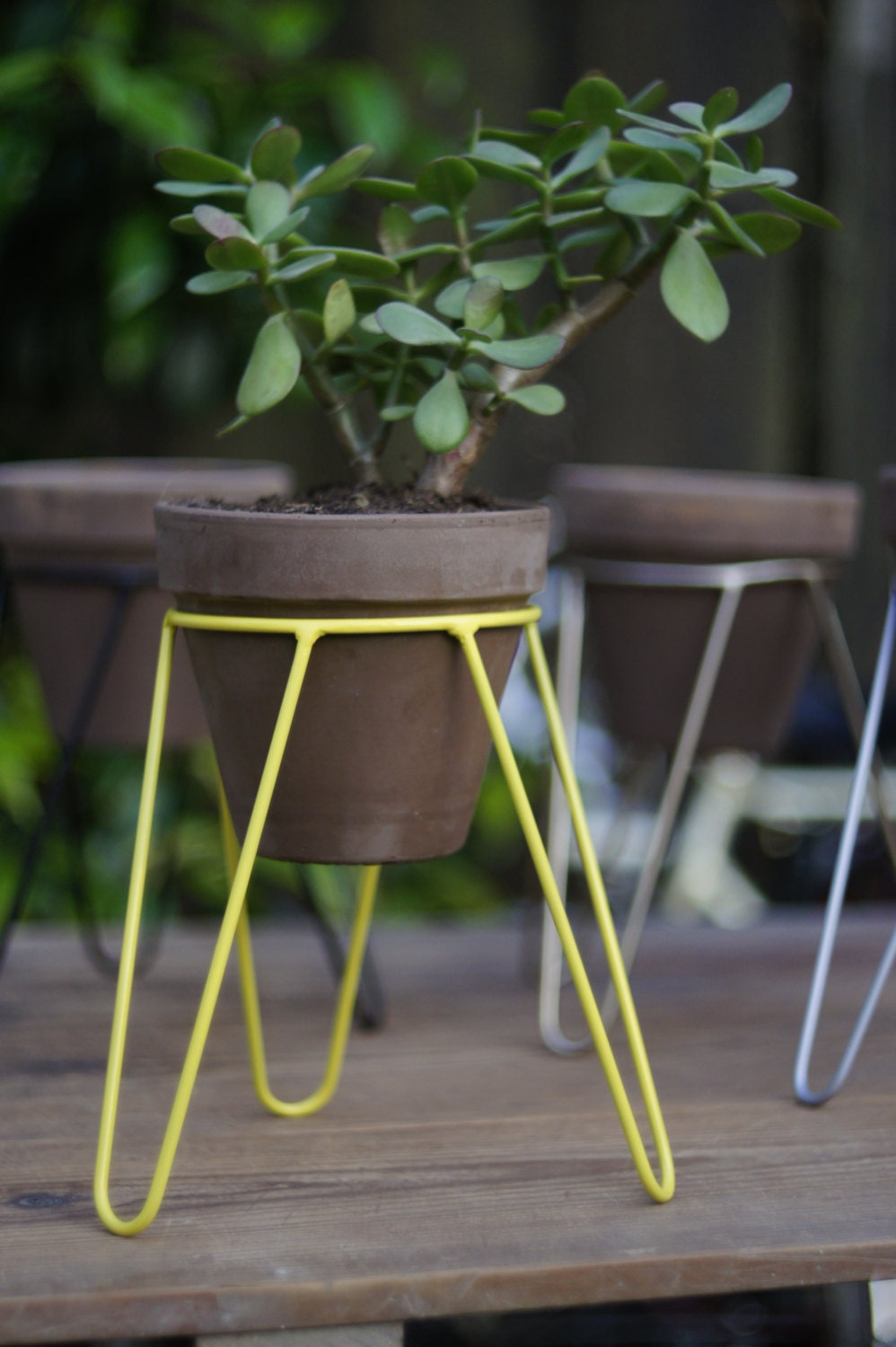 Metal pot stand for plants plant stand tripod large model - Steel pot plant stands ...