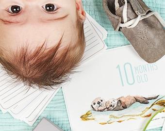 Under the Sea Baby Milestone Cards