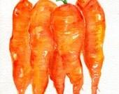 Carrots watercolor painting original vegetables 5 x 7 original watercolor painting bunch  carrots, small veggie artwork, culinary watercolor