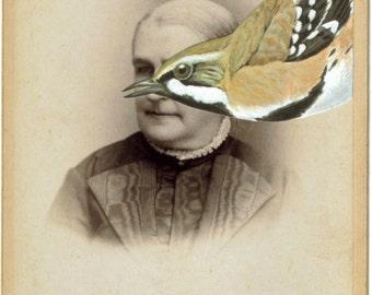 Original Art Collage, Surreal Portrait, Natural History Art, Victorian Artwork, Antique Photo Sepia Photography, Strange Bird Eye