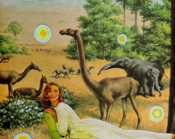 Prehistoric Dinosaur Art, Strange Landscape Artwork