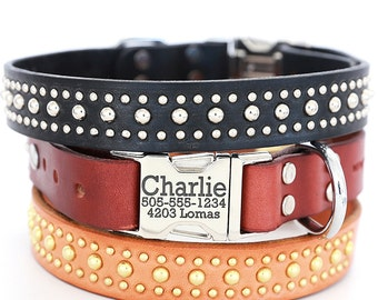Personalized Leather Dog Collar -- The Bart