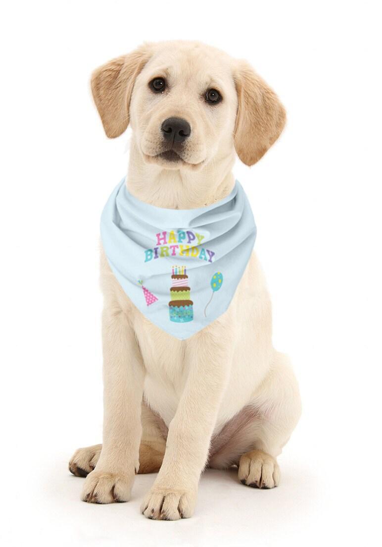 Happy Birthday Dog Bandana Birthday Bandana Dog Birthday