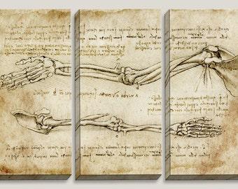Medical Blueprint, Canvas Art, Da Vinci Reconstruction, Anatomy, Doctor, Nurse, School, Chiro, Office Decor, Mens Decor, Man Cave, Antique