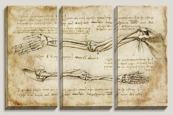 Medical blueprint canvas art da vinci reconstruction like this item malvernweather Images