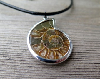 ammonite necklace. men's jewelry. natural fossil pendant.