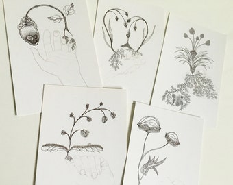 Art Postcards: Personal Growth postcards, postcard set of 5, plant drawings, wall art, plant illustrations, pretty postcards, gift