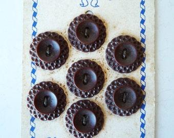 Vintage Set 7 Brown Carved Buttons on Card / Molded Celluloid Plastic / SALE