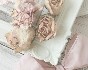 Painted Shabby  Frames Victorian Romance Rustic Shabby Cottage Rose Pink Green Ornate Frame Mix. Woodland Spring ROmance. set of 5