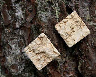 birch bark studs - square earrings - eco friendly - nature jewelry - off white